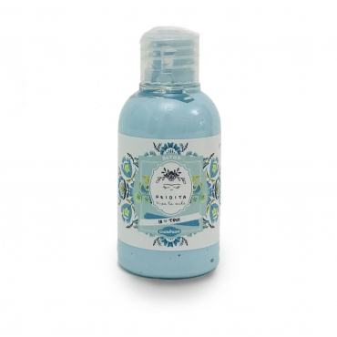 TEAL 18 CHALK PAINT FRIDITA 50ML